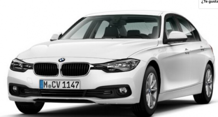 BMW Serie 3 318d Business (Manual) Renting
